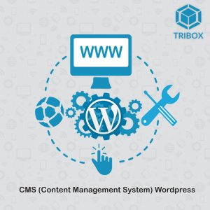 Tribox,Web Design,Web Shop,Web Developer,Web Development,Website