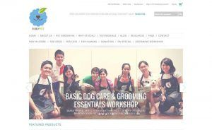 Tribox,Web Design,Web Shop,Web Developer,Web Development,Website